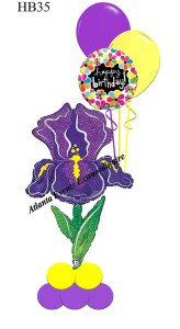 HB35-Iris-You-All-The-Best